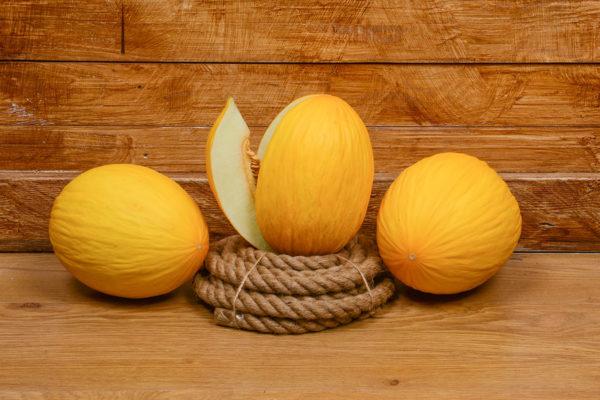 melon-house-fair-amarillo-ambarino-02
