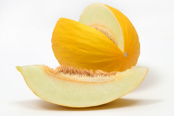 melon-house-fair-amarillo-ambarino-03