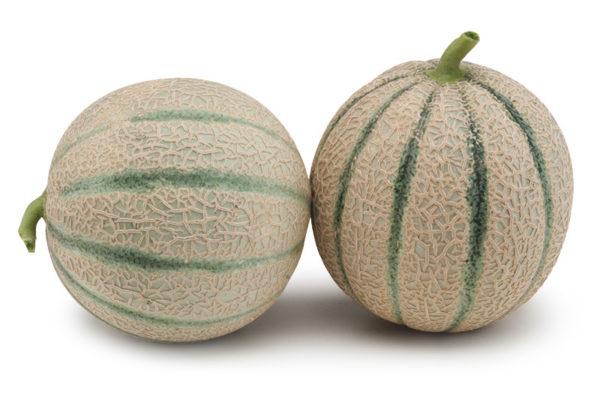 melon-house-fair-cantaloupe-e25c00750-00