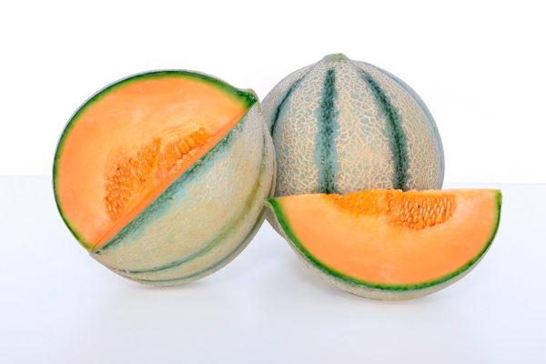 melon-house-fair-cantaloupe-ketzal-02