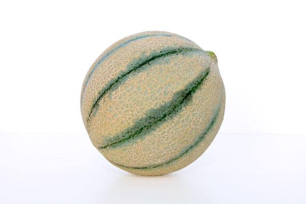 melon-house-fair-cantaloupe-ketzal-04