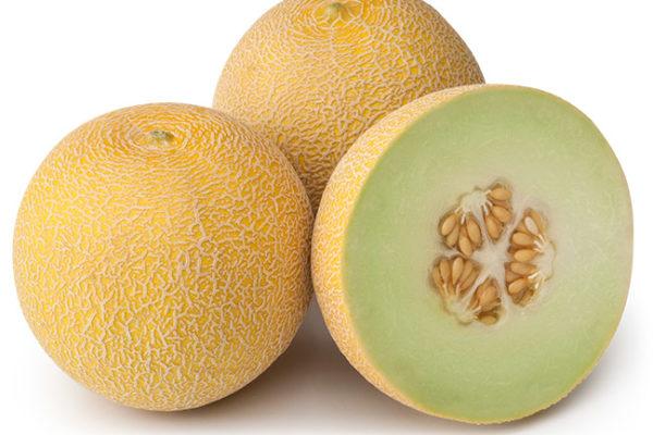 melon-house-fair-galia-ancestral