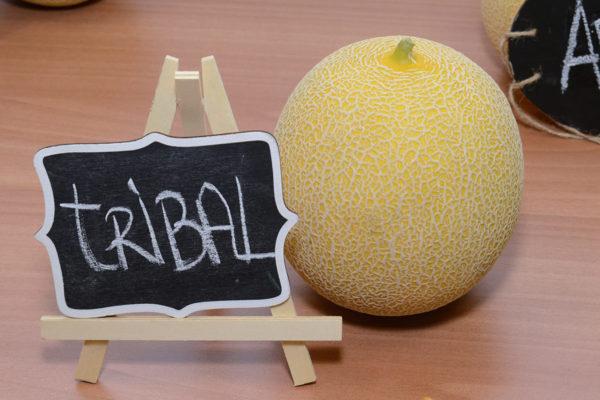melon-house-fair-galia-tribal-01