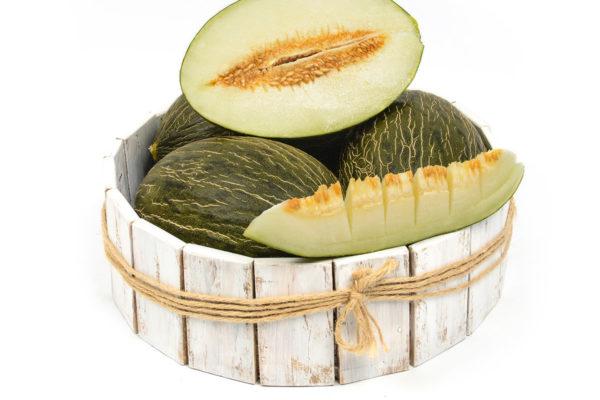 melon-house-fair-piel-de-sapo-alcarez-01