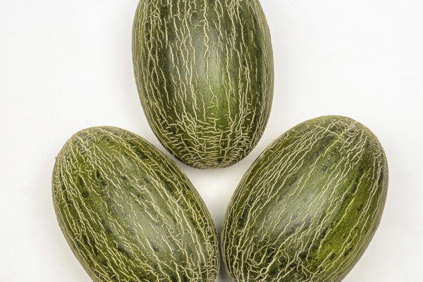 melon-house-fair-piel-de-sapo-osorio-03