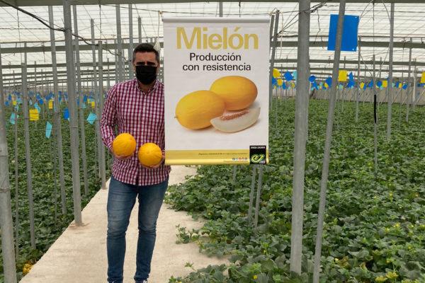 melon-house-fair-enza-zaden-melon-amarillo-mielon-2021-01